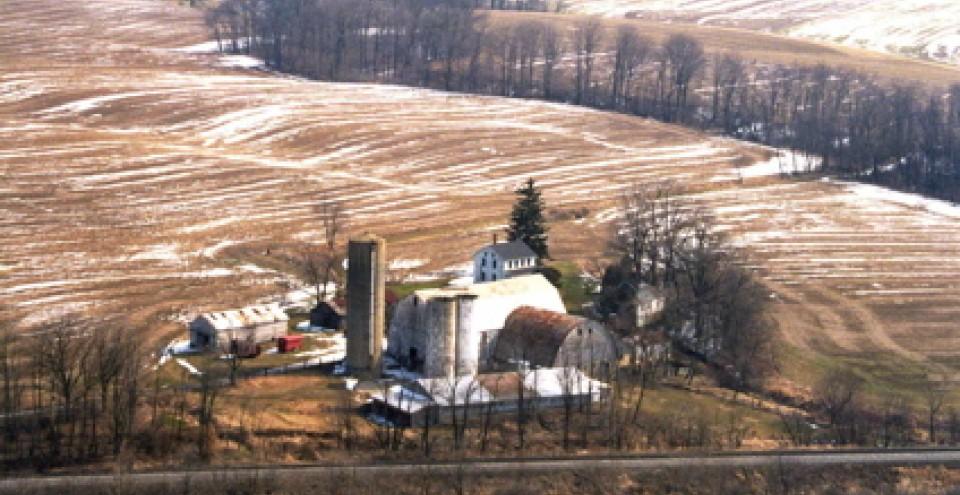 The Farm - 2005