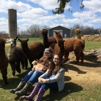 Samantha & Christy with alpacas - April 2015